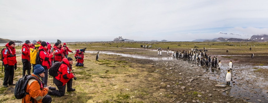 a group of people on shore in antarctica gathered together to take photos of a group of penguins standing in a muddy puddle