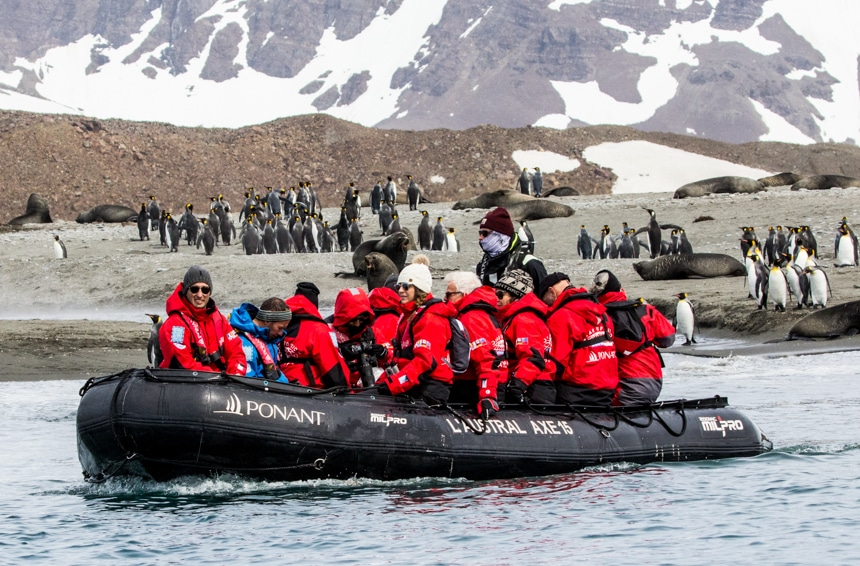 a group of people floating on a black zodiak in the sea in antarctica with penguins and fur seals on shore in the back ground