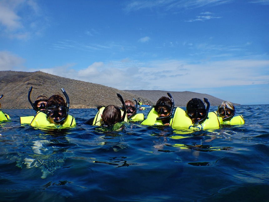 As a Galapagos activity a group of snorkelers float at the ocean surface wearing neon green life vests, masks and snorkels.