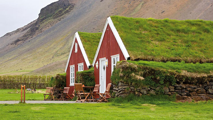 2 small red homes with grassy roofs sit side-by-side amidst bright green vineyards with a large hill behind, in Iceland.