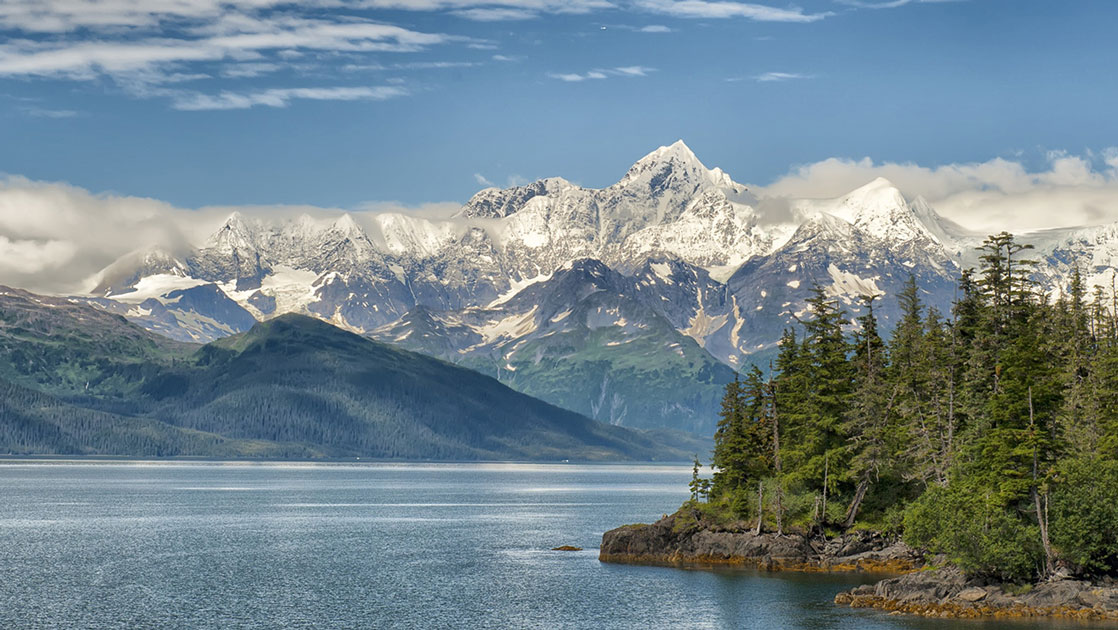 Calm water sits beside tall green fir trees & snow-covered peaks in the background, in Prince William Sound, Alaska.