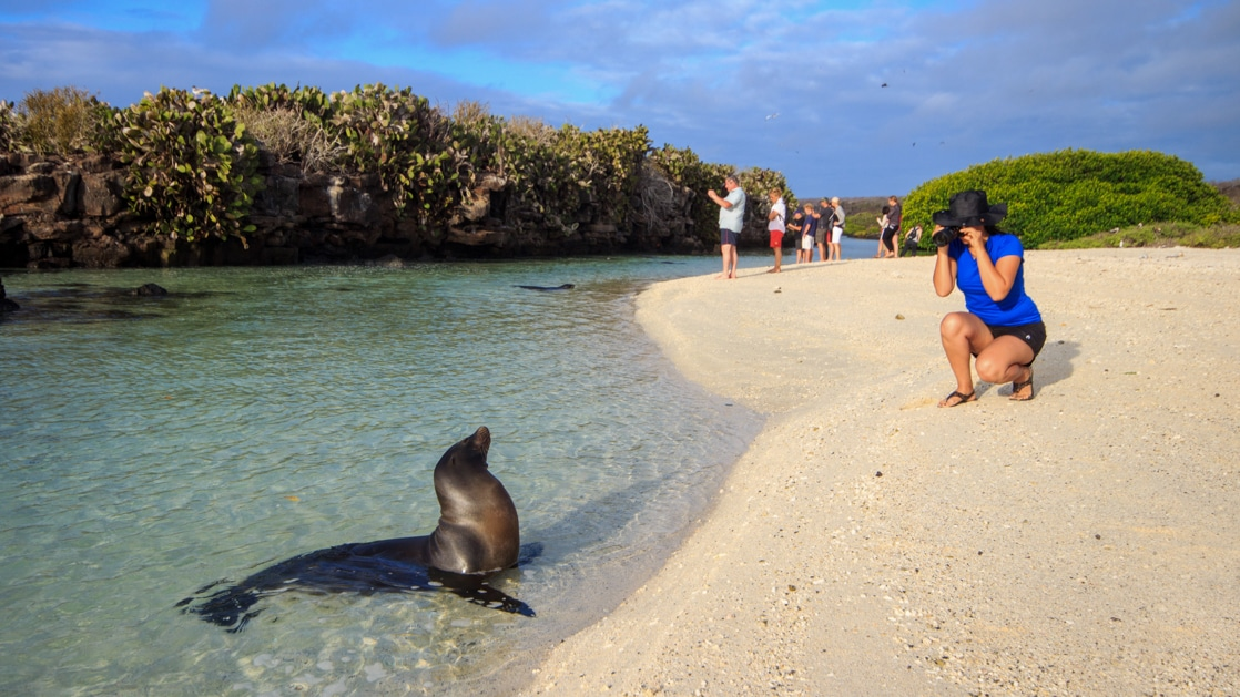 Traveler kneels on white-sand beach to photograph sea lion sitting in shallow water, during an Elite cruise in Galapagos.