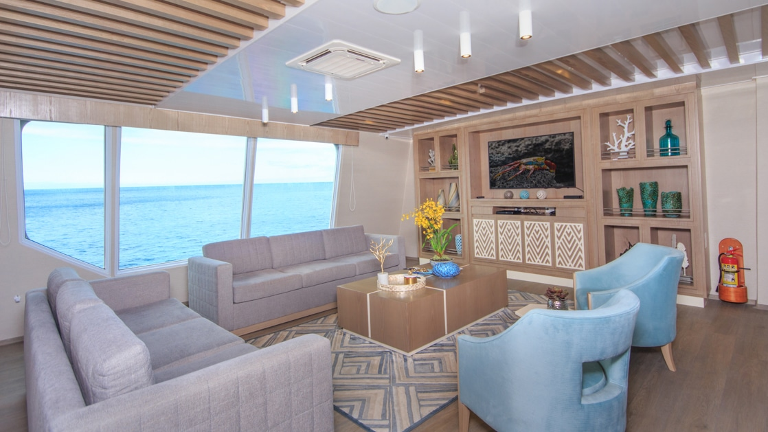 2 gray couches & 2 blue padded chairs encircle a wooden coffee table beside 3 large view windows & wooden bookshelves on M/C Endemic.