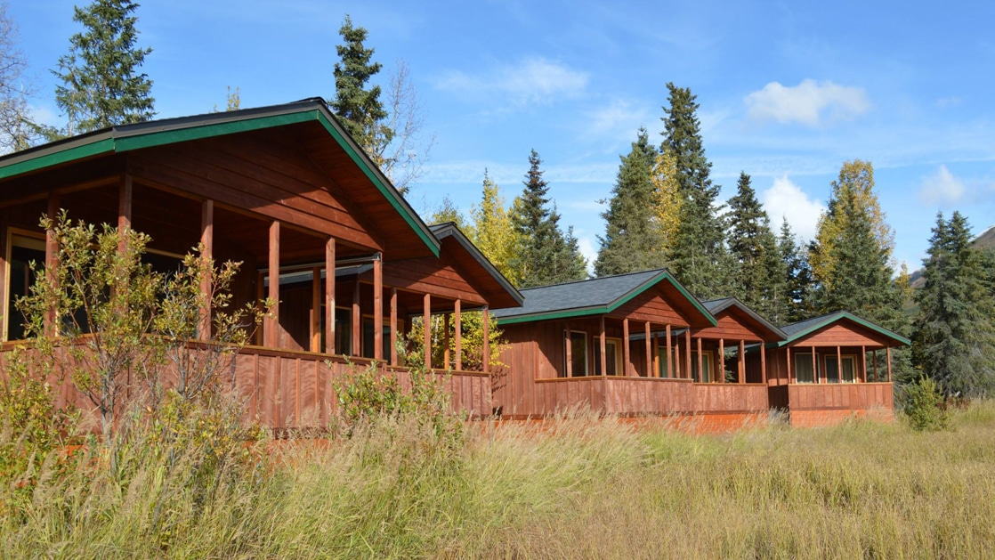 5 rustic lakefront cabins made of wood & dark green metal roofs sit amongst tall grass with tall pine trees behind on a sunny day.