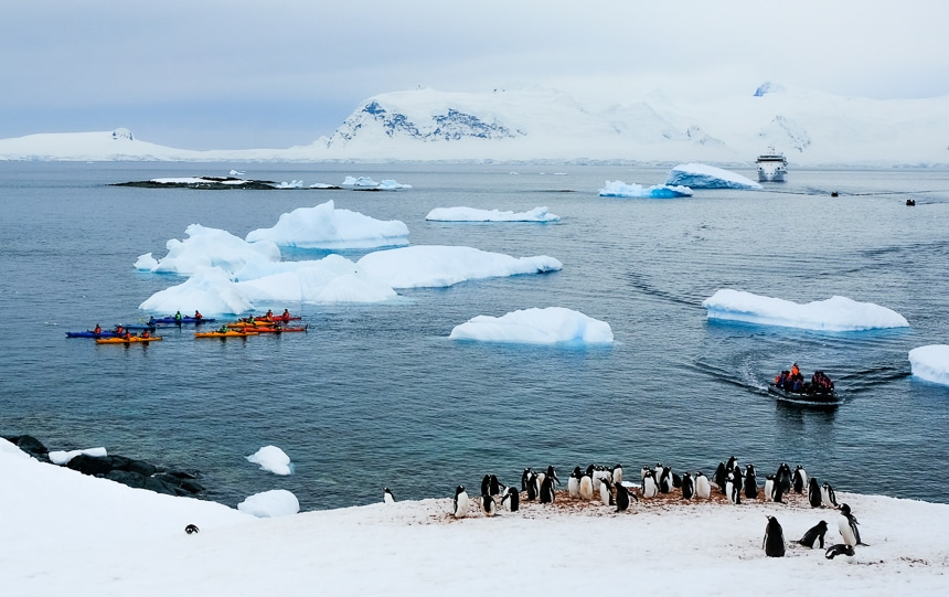 An Antarctic landscape of floating icebergs and a ship, guests riding an inflatable zodiac, a group of kayakers plus a group of penguins on a snowy shoreline.