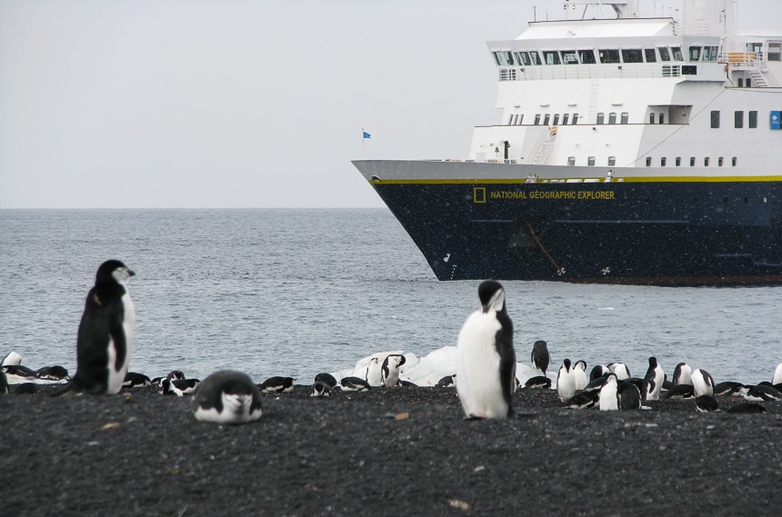 A group of white and black penguins rest on a rocky black beach white a National Geographic ship floats just offshore in Antarctica.
