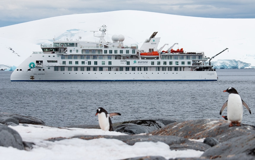Two black and white penguins stand on shore as a futuristic and modern looking white Antarctica cruise ship navigates the ocean past them.