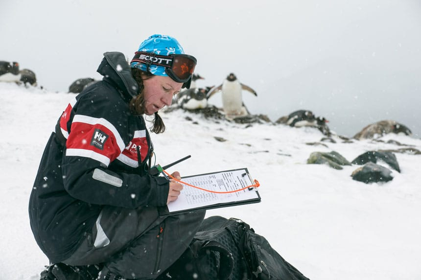 Woman sits in snow with penguins looking on & fills out a paper form on a clipboard, part of citizen science in antarctica.