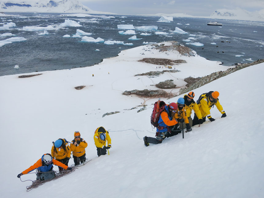 Group of polar travelers in bright yellow & orange jackets, harnesses & helmets works on climbing a snowfield with penguins & ocean in the background.