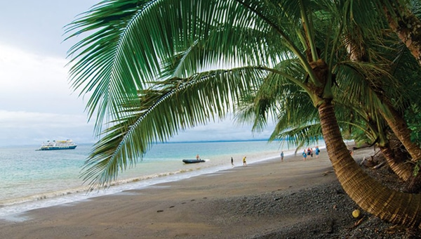 Palm trees on the shore of a sandy beach with a Belize small ship cruise ship anchored just off shore and travelers on the beach.