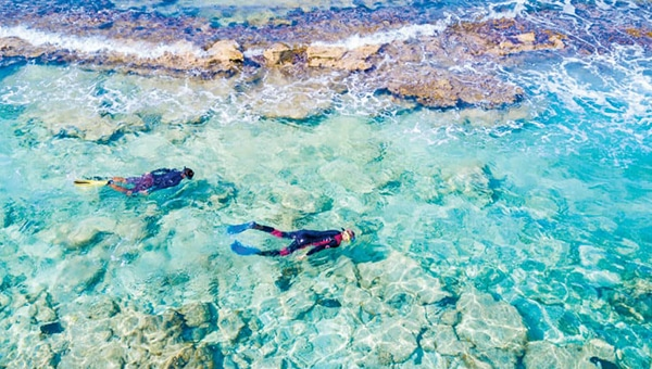 Two snorkelers in wetsuits swim in the Caribbean Sea turquoise water near coral on a Belize snorkeling cruise.