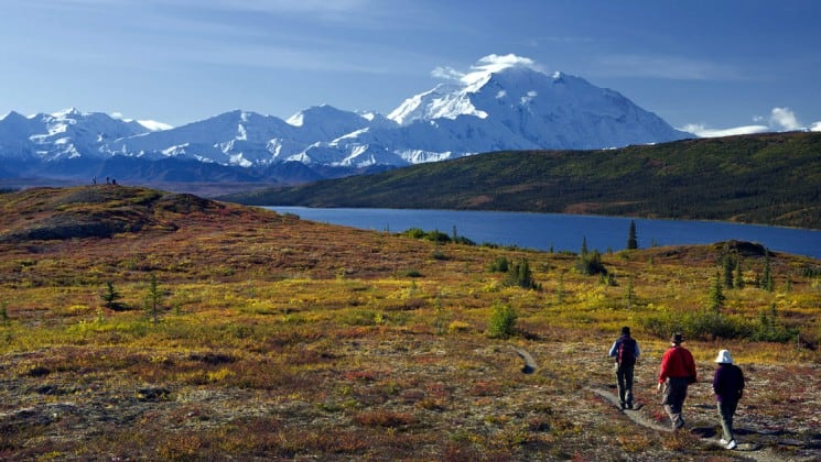 Three hikers walk down a small path toward a lake with snow-covered Denali mountain in the background