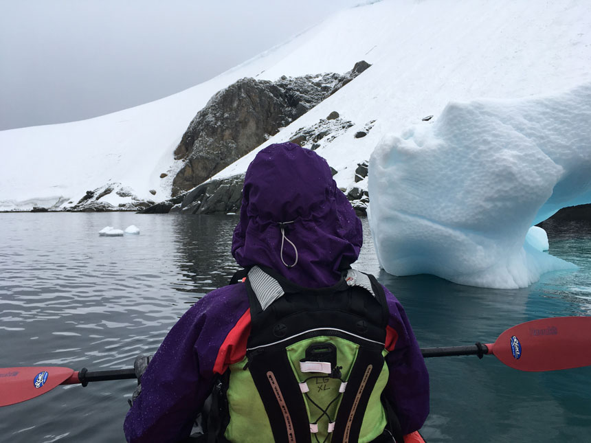 View from behind a kayaker in a purple jacket with hood on, in green PFD , holding a red paddle while floating in calm water beside a blue iceberg in Antarctica.