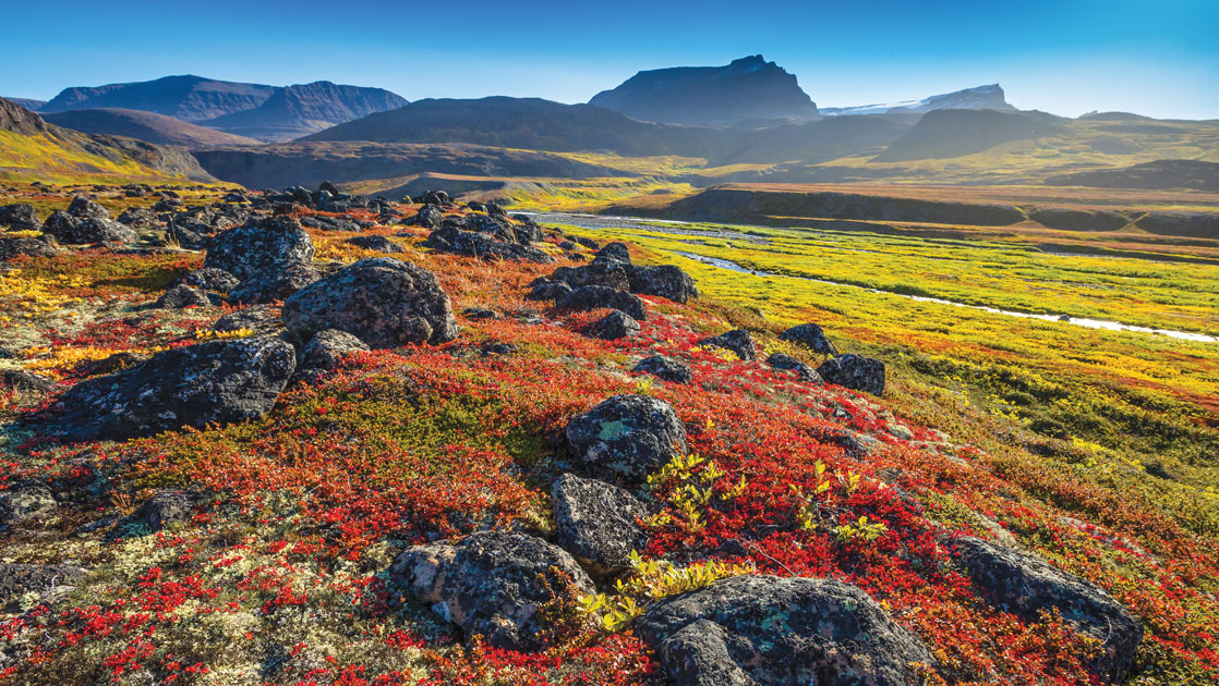 Arctic tundra of red, orange, gold & bright green under a misty blue sky, seen during the Iceland & Greenland: Edge of the Arctic Cruise.
